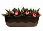 super-kvetinace-truhlik-mareta-coko-bronz-osazeni.jpg