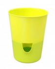 Samozavlažovací květináč Rosmarin ø 11 s okénkem žlutá + zelená